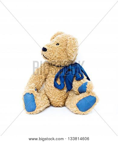 teddy bear looking aside isolated on white background
