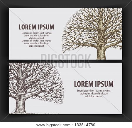 leafless tree. ecology, nature banner. hand drawn vector old oak