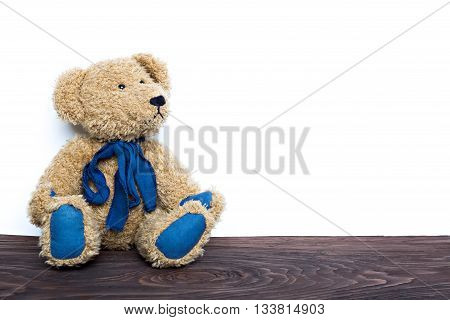 cute teddy bear sitting on wooden board isolated on white background looking aside