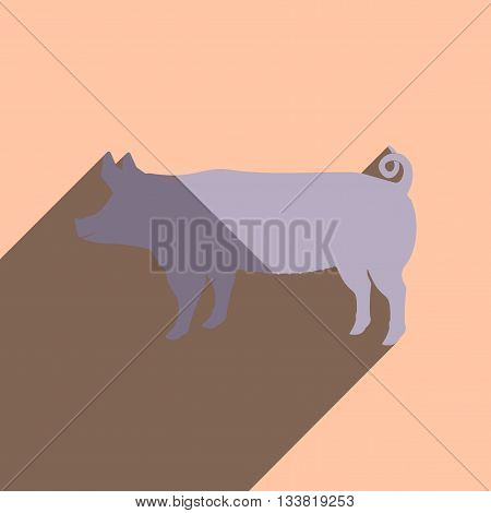 Flat icons with shadow of pig. Vector illustration