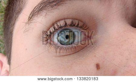 Olho verde com rosto parcialmente visível. Reflexo nos olhos, grama verde ao fundo