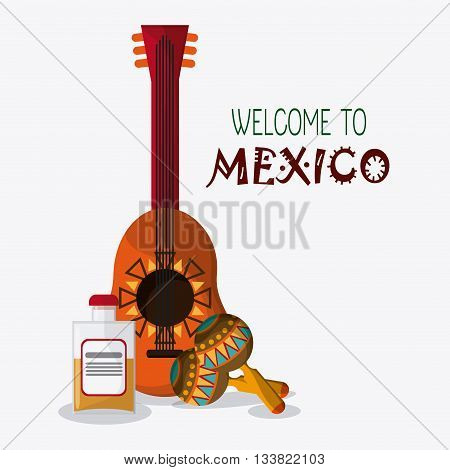 Mexico culture icons in flat design style, guitar, maracas and tequila, vector illustration