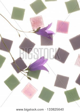 beautiful pearl pink purple and green glass mosaic with light stripes and flowers of lilac-purple bell field similar in color to the mosaic on a white background isolation