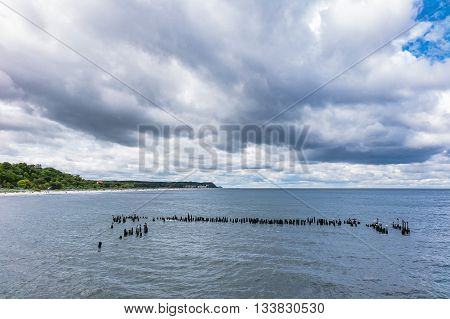 Groynes in Heringsdorf on the island Usedom (Germany).