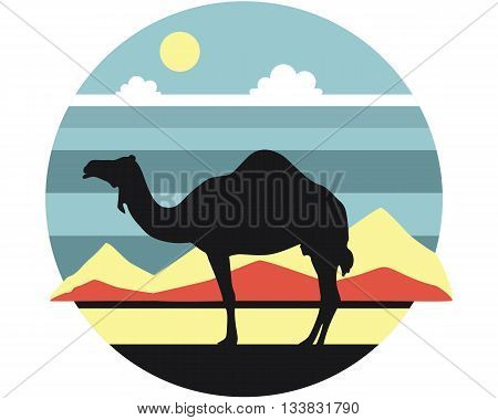 Dromedary standing in the desert against the backdrop of mountain scenery