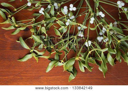Bunch of mistletoe on a wooden floor