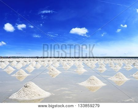 Heap of salt in the farm made of natural ocean salty water evaporated by sunny light preparing for last process before sent to industry factory