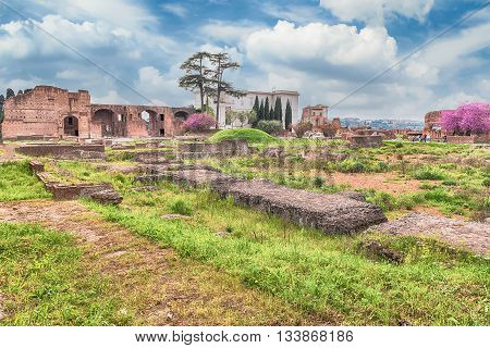 Roman Ruins On The Palatine Hill In Rome, Italy