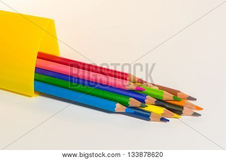 twelve color of The color wood  pencils