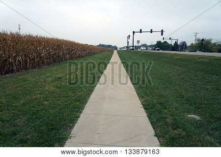 PLAINFIELD, ILLINOIS / UNITED STATES - OCTOBER 5, 2015: A sidewalk lies adjacent to a cornfield in Plainfield, Illinois.