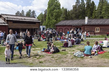 UMEA, SWEDEN ON JUNE 06. People celebrating the Swedish National Day on June 06, 2016 in Umea, Sweden. Unidentified people in a park next to Gamlia Homestead. Editorial use.