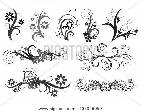 Curly pattern of flowers and petals on a white background