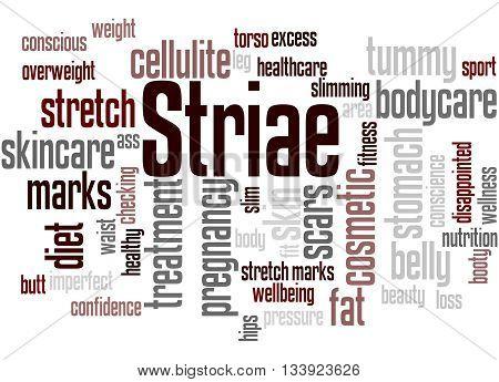 Striae, Word Cloud Concept 8