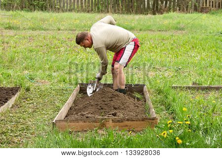 Man digging up a garden-bed to garden plants on a countryside. Man with a shovel in summer cottage garden