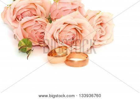 two golden rings and delicate roses on white background
