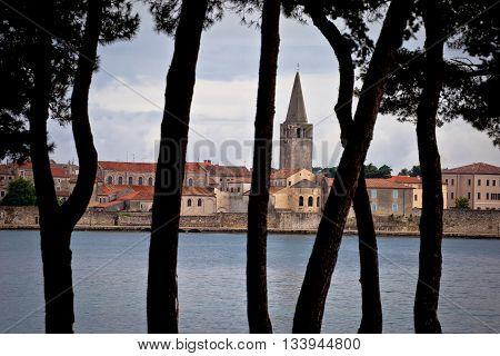 Town of Porec pine trees view Istria Croatia