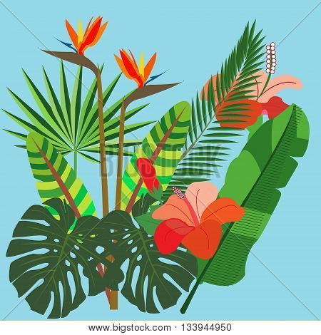 vivid bunch of different tropical flowers and plants. Bouquet of exotic flowers.