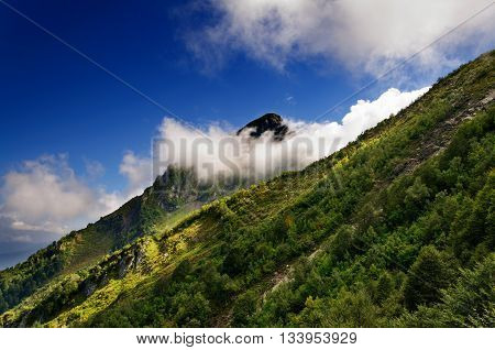 Mountain peak hidden cloud. Summer. Summer day