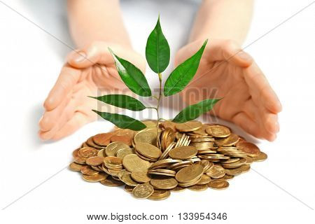 Hands and plant sprouting from a handful of coins
