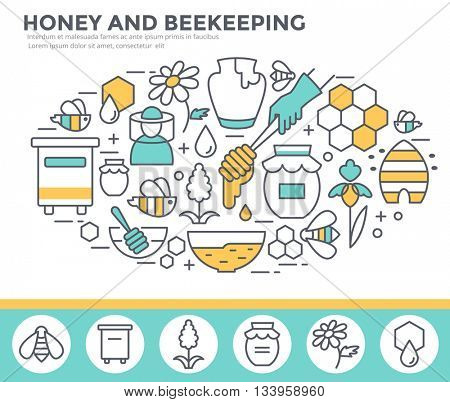 Honey and beekeeping concept illustration, thin line flat design