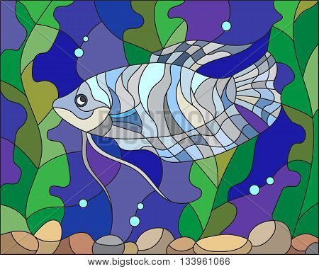 Illustration in stained glass style with blue gourami on the background of water and algae
