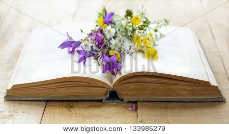 Opened book with bouquet of wild flowers, nostalgic vintage background
