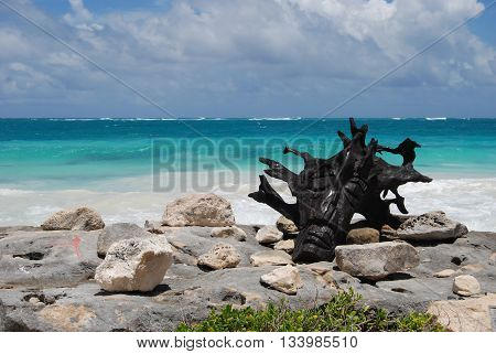 TULUM, QUINTANA ROO, MEXICO - MAY 31, 2013: wooden head sculpture on the beach
