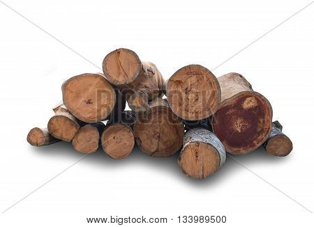 timber texture; Log's crosscuts on the timber cutting on white background