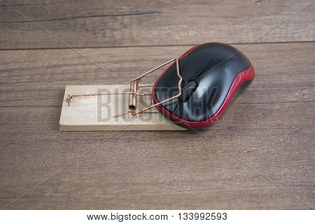 The mouse in a mousetrap on a wooden floor image for design,