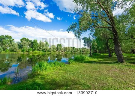 river landscape with forest and blue sky