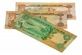 stock photo of dirhams  - Dirhams  - JPG