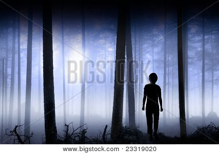 Person In Blue Hazy Forest