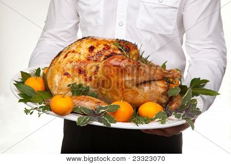 Roasted Turkey Feast