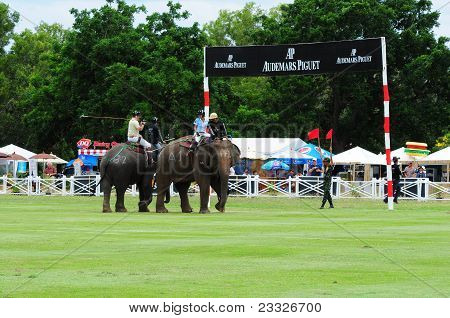 Elephant Polo Game
