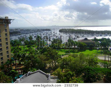 Coconut Grove V1