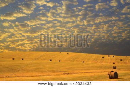 Autumn Hay Harvest At Sunset