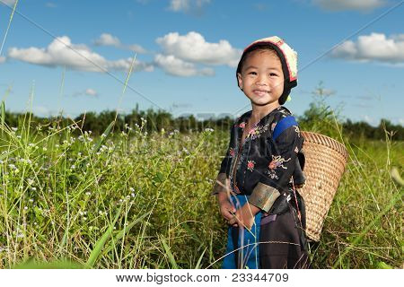 Asian Hmong Girl On Rice Paddy