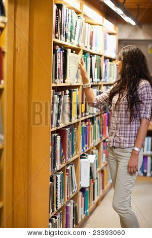 Portrait Of A Young Woman Choosing A Book