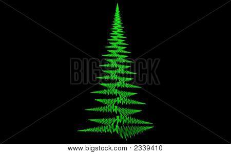 Xmas Green Fern