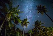 Night shot with palm trees and milky way in background, tropical warm night poster