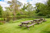 Row of weathered wooden picnic tables with benches on a lawn near a pool in  summer english garden o poster