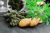 Cookies With Cannabis And Buds Of Marijuana On The Table. A Can Of Cannabis Buds Young Cannabis Plan poster
