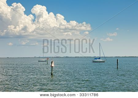 Sailboats Anchored In Tampa Bay, Florida