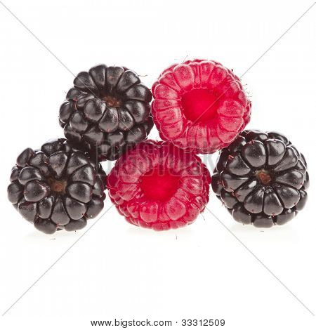 Blackberries ( dewberries) with raspberries on white background