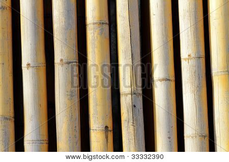 Background Texture Of Bamboo