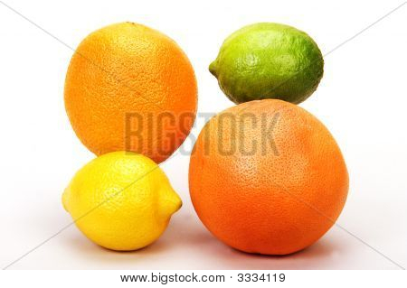 Citrus Family 1