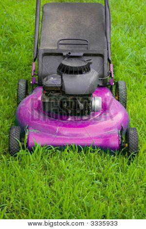 Cortador de grama-de-rosa