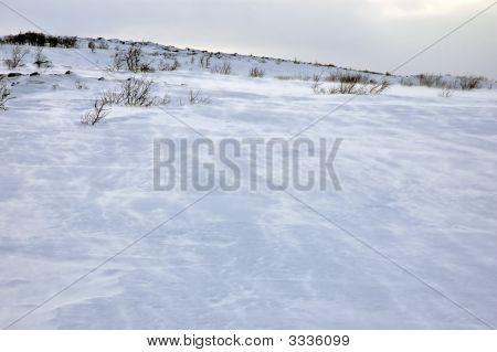 Windigen Tundra