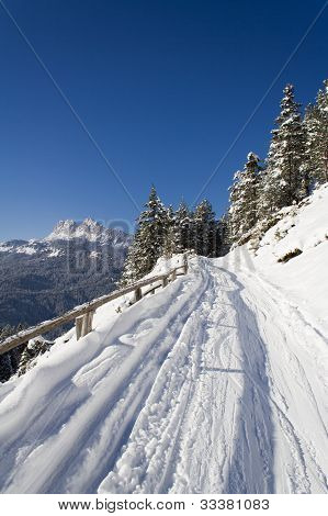 Trail on the slopes of San Vito di Cadore