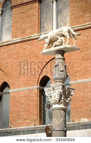 Siena Wolf